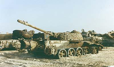persian gulf war research paper